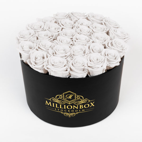 Lavinia Bello with Snow Rose | Millionbox.se