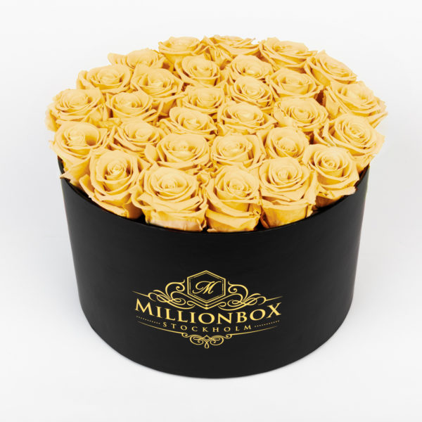 Lavinia Bello with Yellow Rose | Millionbox.se