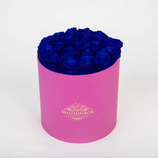 Lavinia Pink with Blue Rose | Millionbox.se