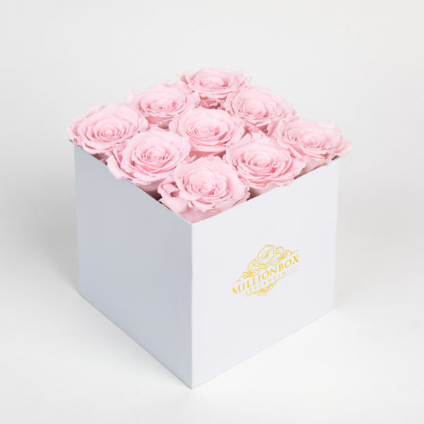 Levante Alora with Pink Rose | Millionbox.se