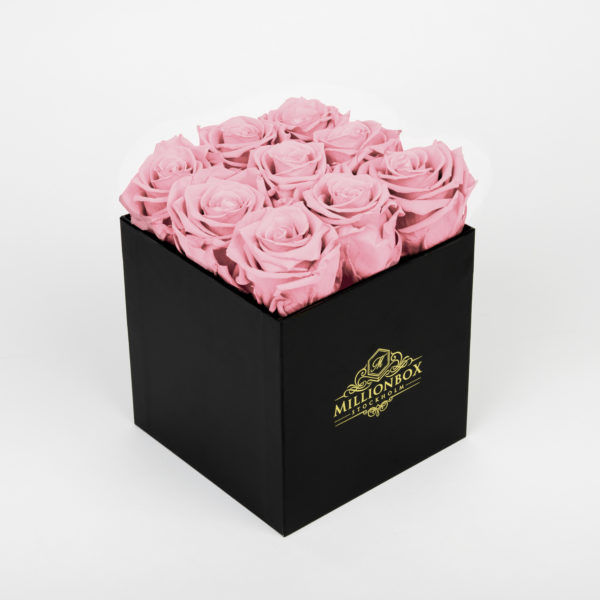 Levante Alore with Pink Rose | Millionbox.se