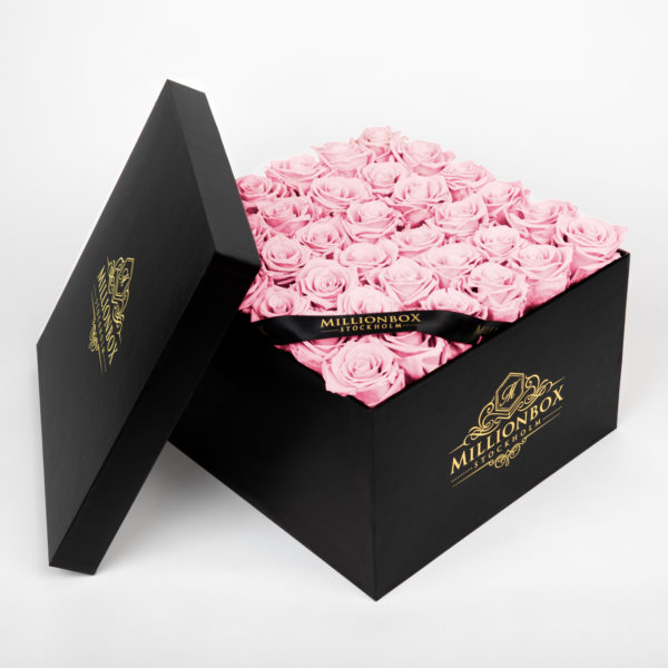 Levante Bello with Pink Rose | Millionbox.se